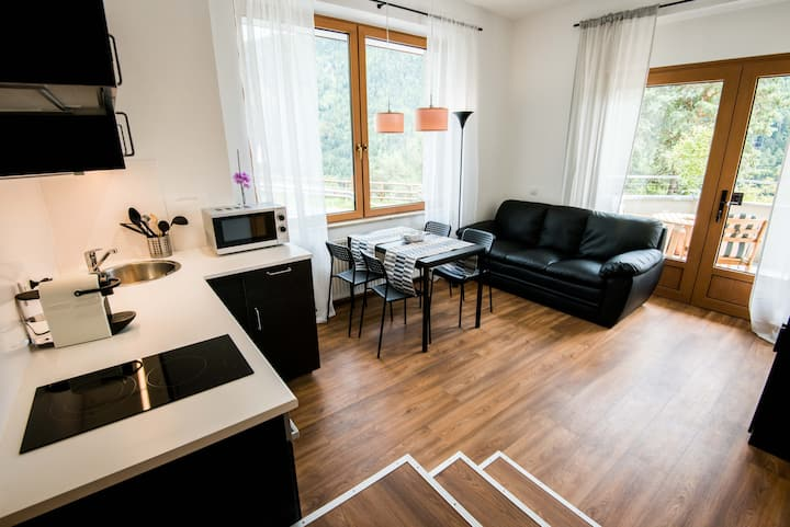 App 02 - New fully furnished flat in top location