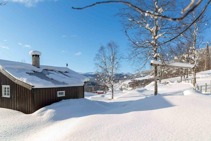 Hytte i fjellbygda Vats, Ål i Hallingdal