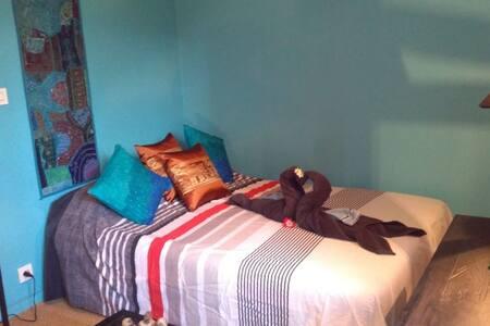 Chambre dans un appartement de charme Bagneux