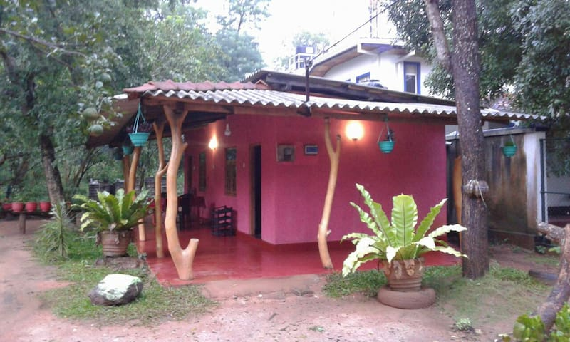 Nethmini Homestay - Sigiriya - Bed & Breakfast