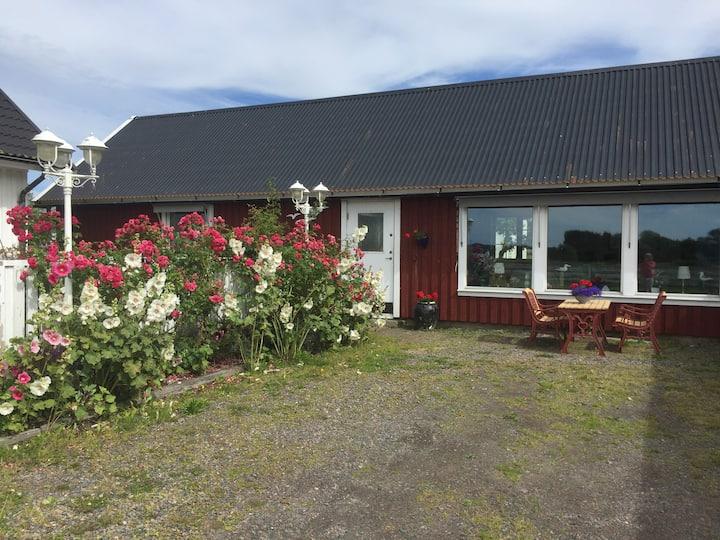 Bo på liten gård med havsutsikt
