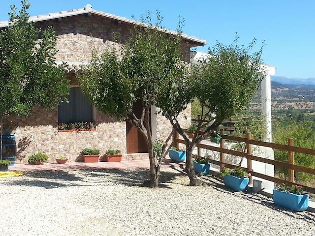 Casa Antonella & Melissa - Oliena - House