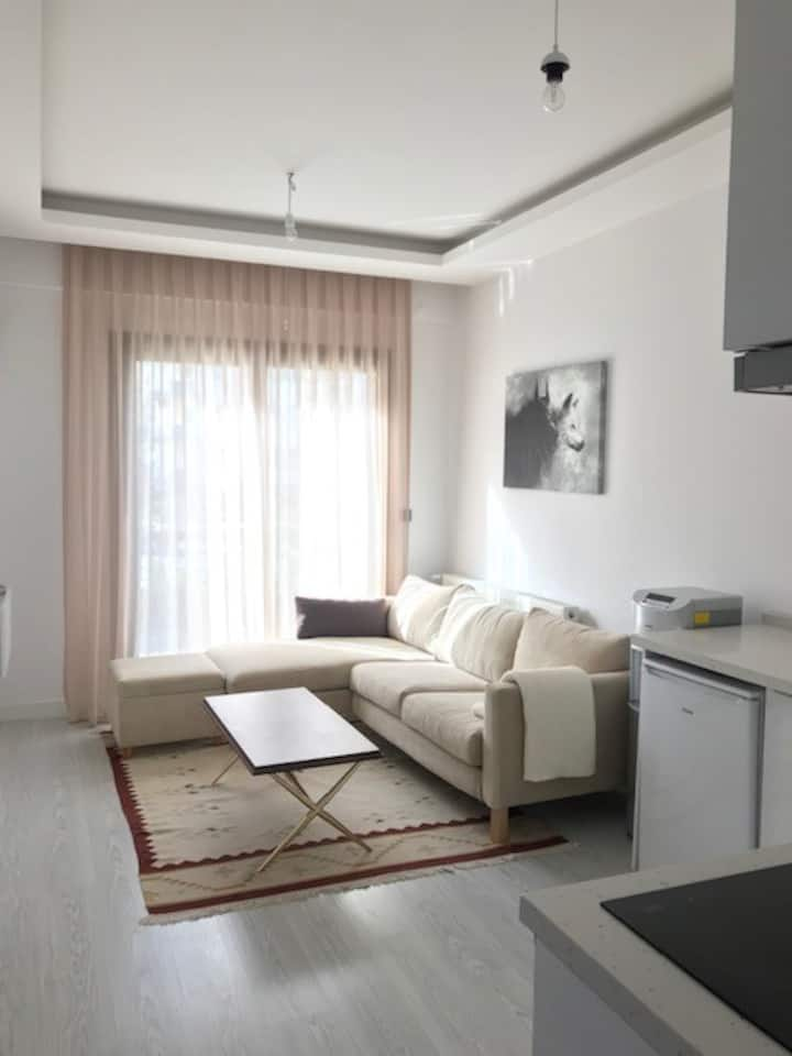 Luxury and New Residence Apartment Izmir/Balcova