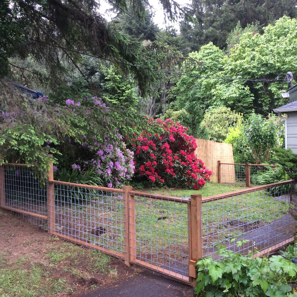 cottage by botanic preserve houses for rent in yachats oregon