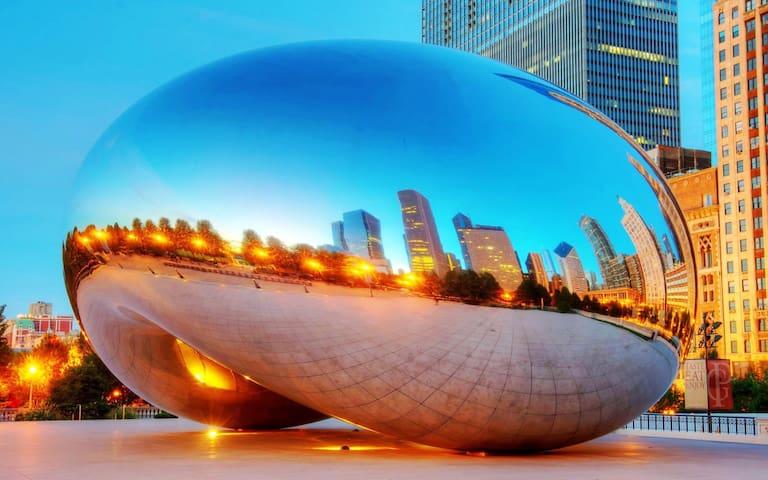 Millennium Park Private bd/bth - Chicago - Huoneisto