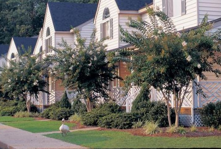 Top Rated 2BDR for 6 on Powhatan near everything! - Williamsburg - Apto. en complejo residencial