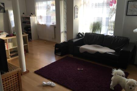 Studio apartment in Helsingborg - ヘルシンボルグ