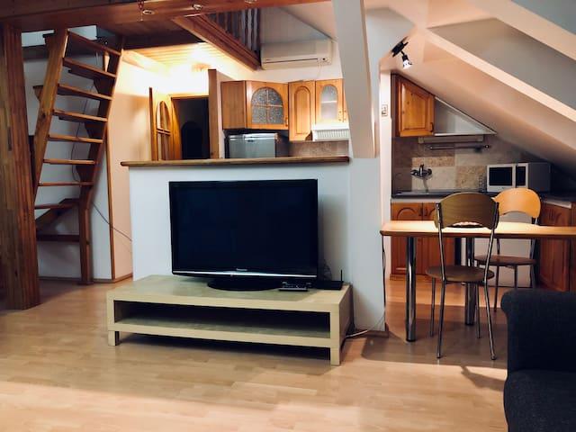 Podkrovný apartmán v centre.