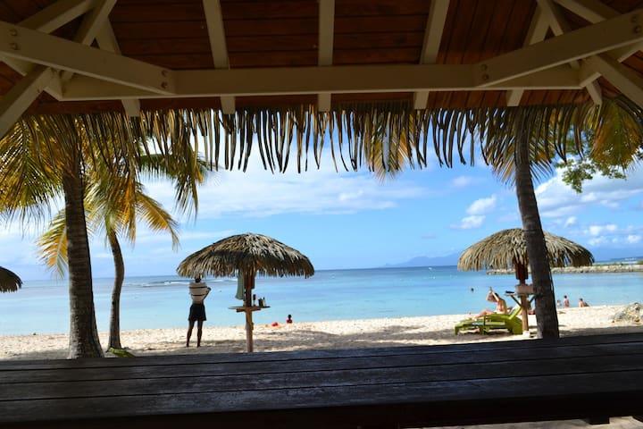 349 Corail plage et piscine - Anse des Rochers