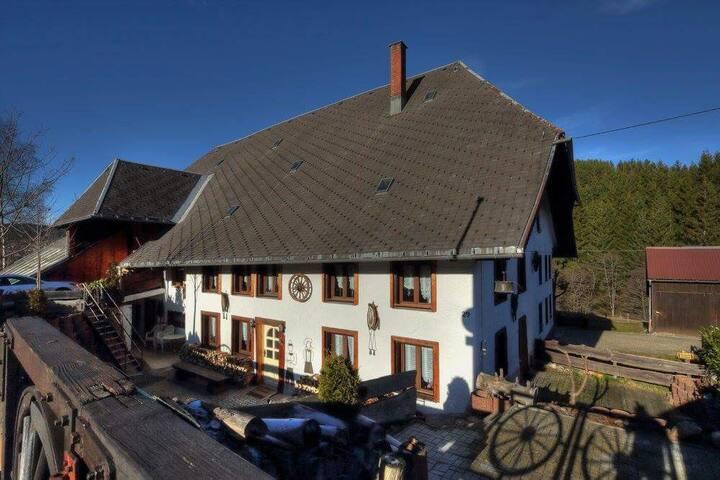 Schwarzwaldhaus Krebs, (Lenzkirch), Schwarzwaldhaus Krebs - Appartment 1, 3 Schlafzimmer, max. 15 Personen
