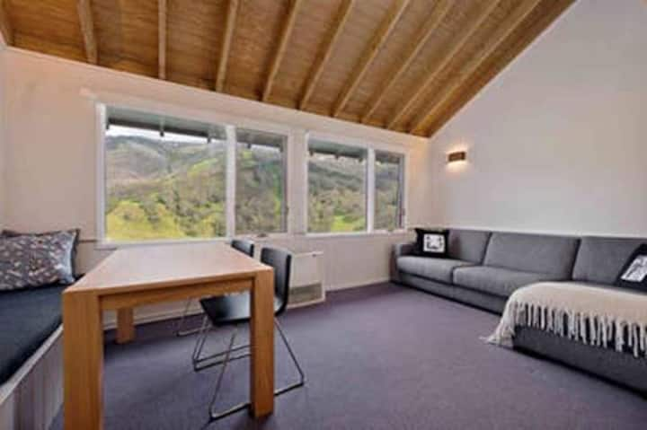 Banjo 3 Chalet - magnificent views of Thredbo