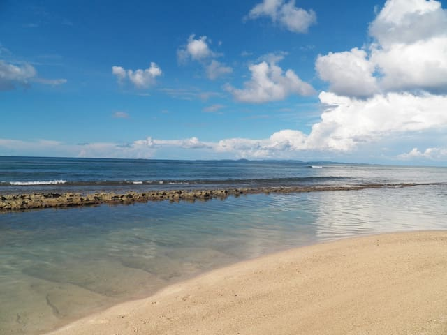 Beach Front House 3b./2ba. - Vieques,  Puerto Rico - 一軒家