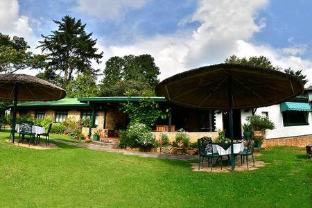 Pine Tree Inn