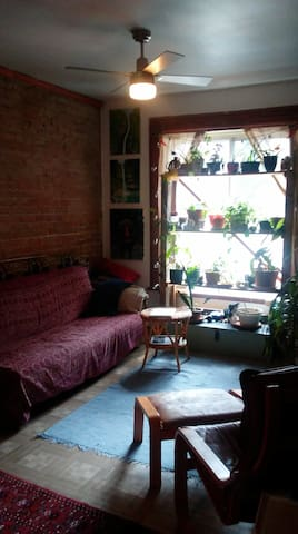 Spacious room in our lovely lower Plateau home