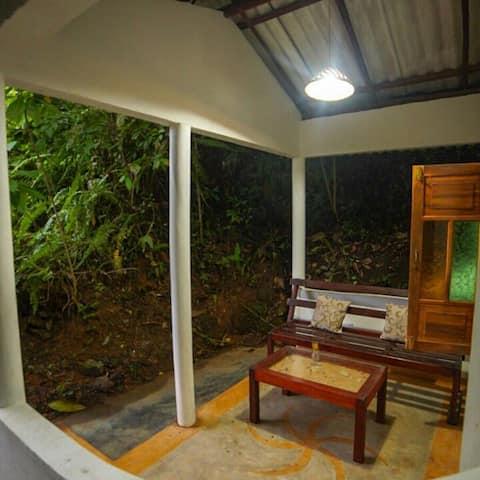 jungle cottage , arround jungle , 5min walk beach