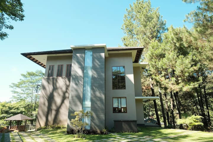 Spacious Pine Forest Villa for MAX 15 guests