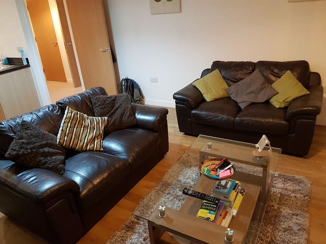 Luxury 1 Bed Flat in front of Millennium Centre - Cardiff - Apartament