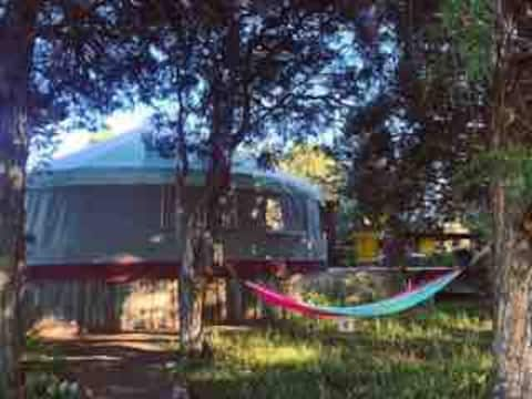 Cozy Yurt  in the trees with biking , star gazing