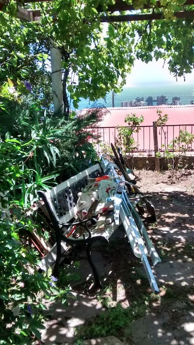 Vista desde jardín