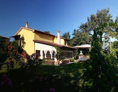 Villetta indipendente recintata con giardino