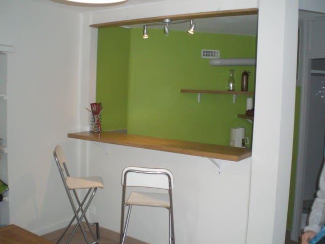 Très grand studio au calme - Aix-les-Bains - Appartement
