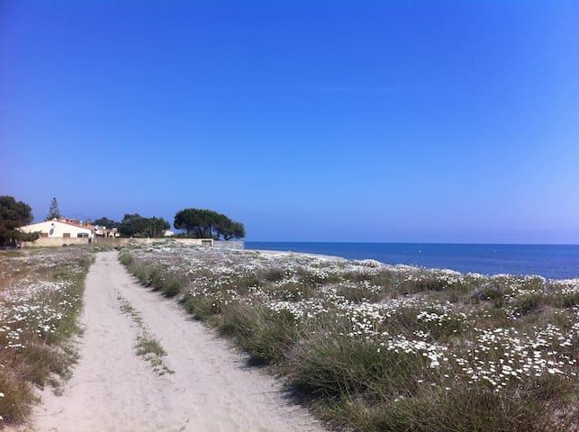 Joli chalet bord de mer climatisé