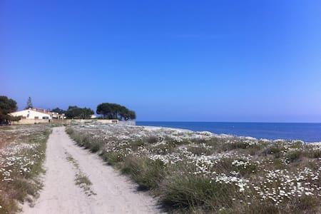 Joli chalet bord de mer climatisé - Lucciana