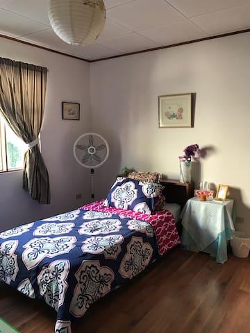Spacious Bedroom in SJ Costa Rica - Sabanilla - Pis