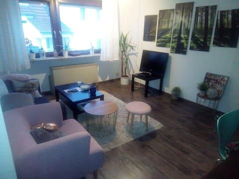 Beautiful 2,5 room apartment near Stuttgart