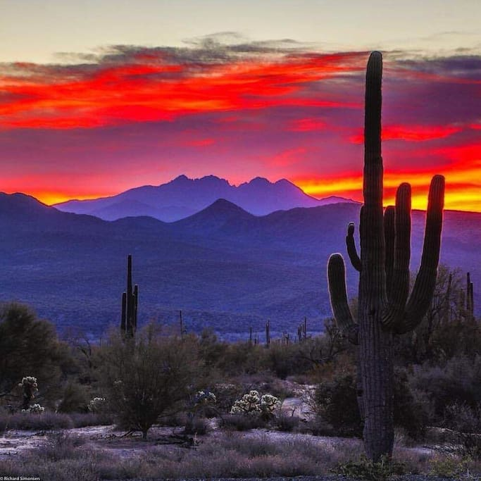 Best sunsets are in Tucson!