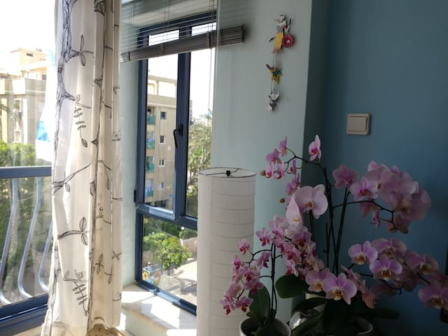 Lovely & Homey near Port w/ Private Parking