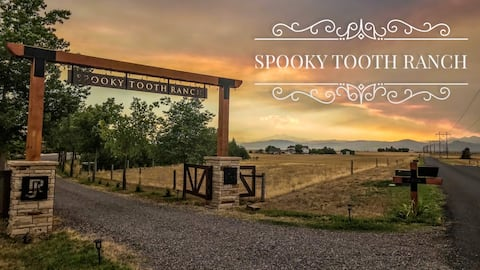Llama-Stay at Spooky Tooth Ranch studio