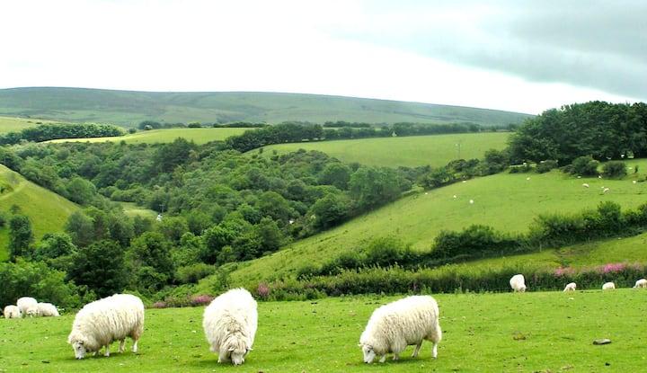 Caffyns Halt-panoramic Exmoor views
