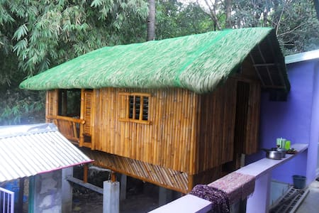 Guest room and beautiful bamboo little house
