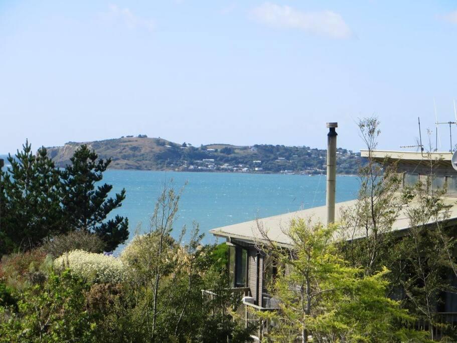 View of Moeraki from Deck