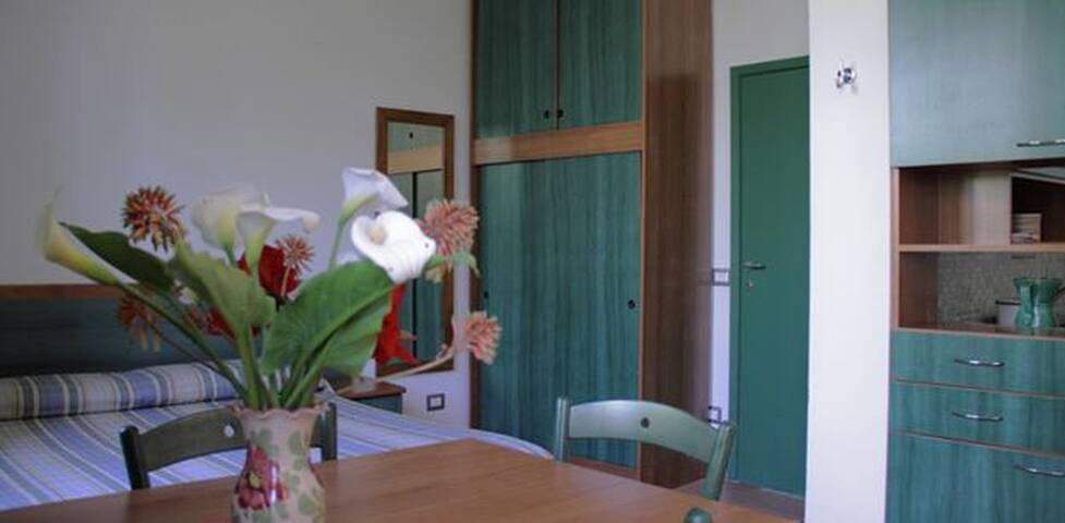 Spacious and Bright Studio Flat with garden