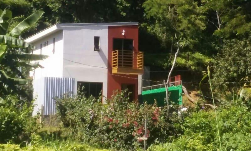 Alondra's House