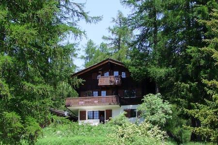 Chalet zum Hirsch, Bellwald - natürliche Idylle - Bellwald - Byt