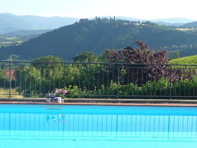 INDEPENDENT HOUSE IN TUSCANY WITH POOL
