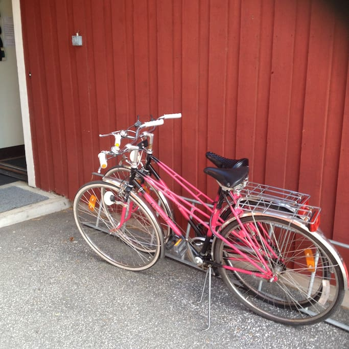 Bikes for rent - 100 kr/day