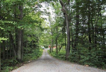 O'Leary's Lane
