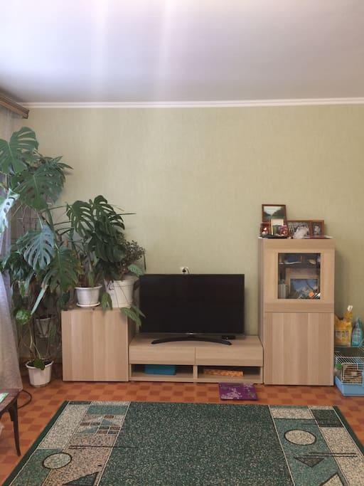 Общая комната-зал с интерактивным тв
