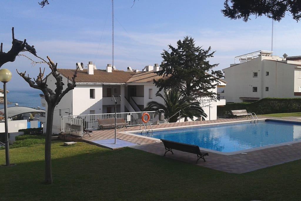 Jardín con árboles y césped con piscina y vistas al mar