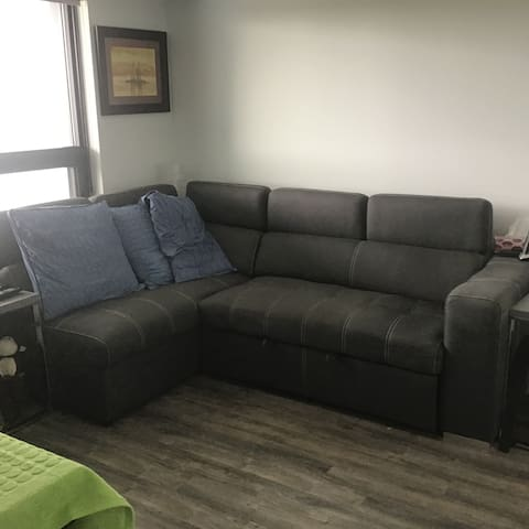 3 month rental - furnished in Kitchener (belmont)