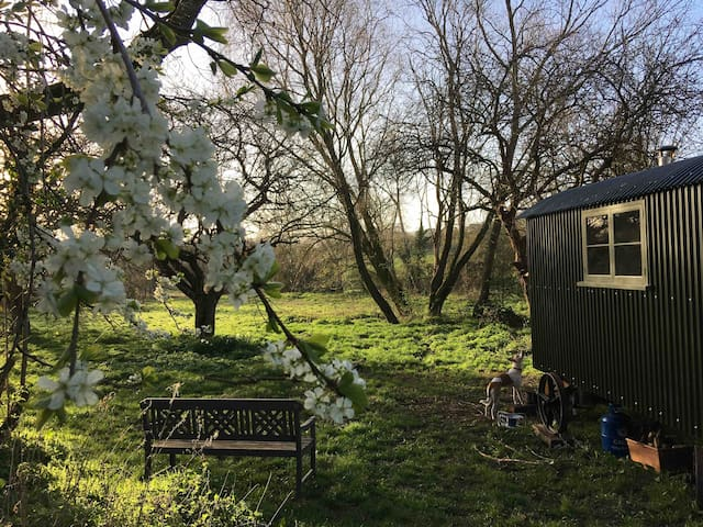 Rural Cotswold Hideaway