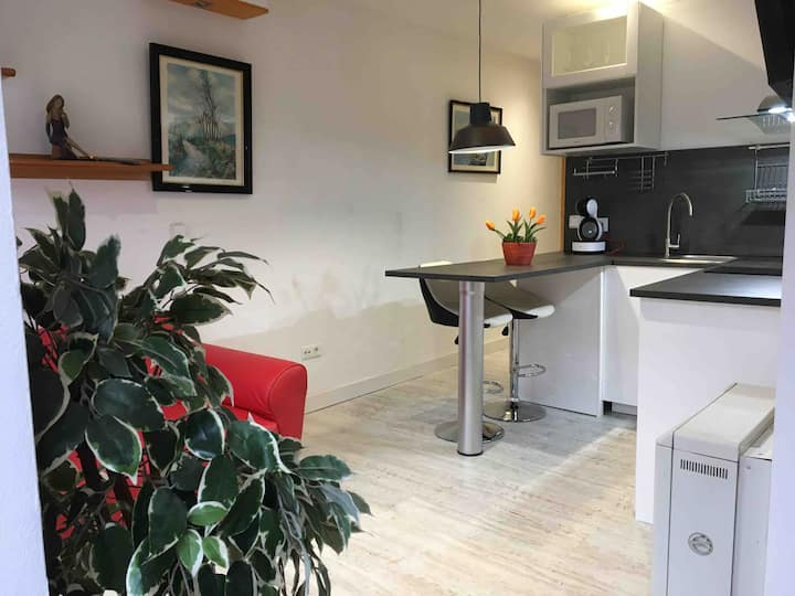 Apartamento Céntrico en Bossost Valle de Aran