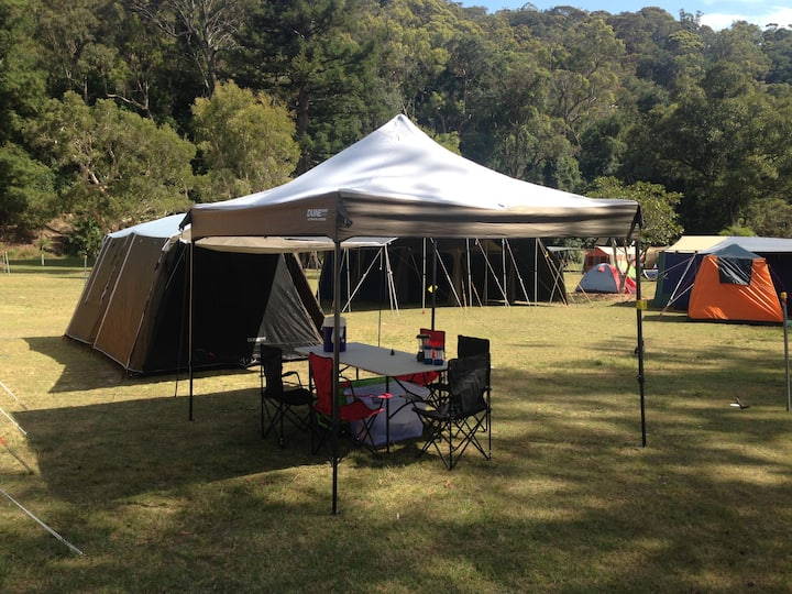 Ku-ring-gai Camping Experience