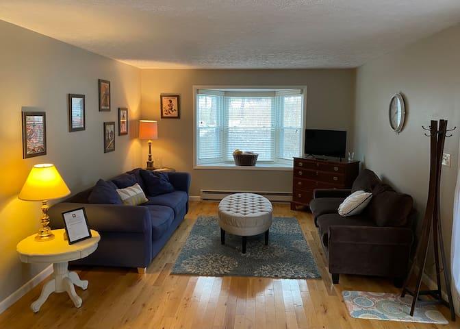 Comfy & cozy living room