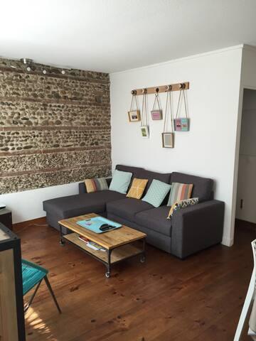 Maison Toulousaine avec patio - Toulouse - House