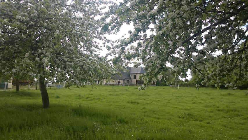 Maison normande à la campagne - Notre-Dame-d'Épine